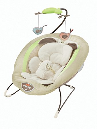 Fisher-Price Snugabunny Bouncer Review