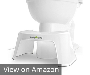 EasyGopro toilet stool Review