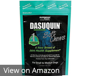 Nutramax Dasuquin Soft Chews Review