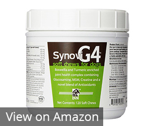 Bayer Animal Health G4 Soft Chew Review