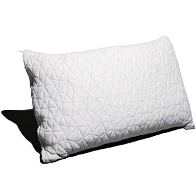 1. Coop Home Goods Pillow, Queen Size