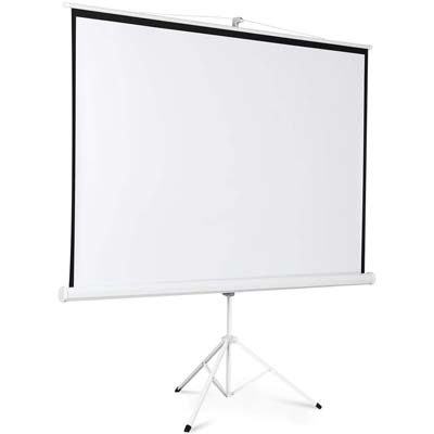 10. Safstar Tripod Projection Screen