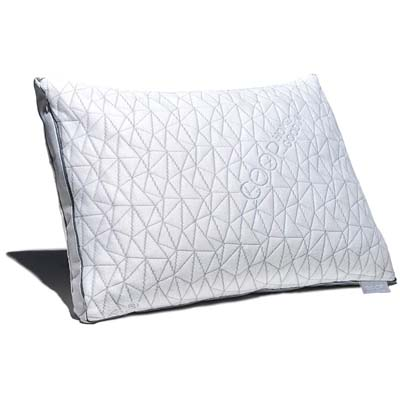 5. Coop Home Goods Memory Foam Pillow- Eden Shredded