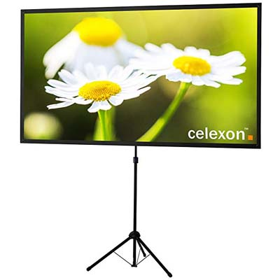5. celexon Tripod Projector Screen